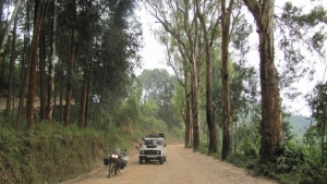 riding the forests in north Rwanda 2